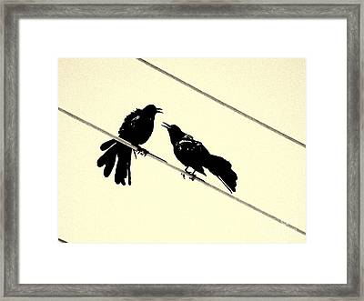 Grack Pecked Framed Print by Joe Jake Pratt