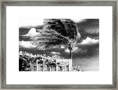 Grainstorm Framed Print by Don Youngclaus