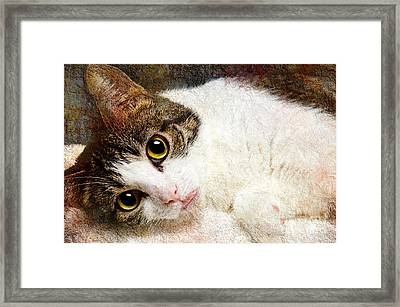 Grammy Said I Could Framed Print by Andee Design