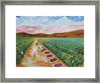 Grapes Farmers Framed Print by Johnny Otilano