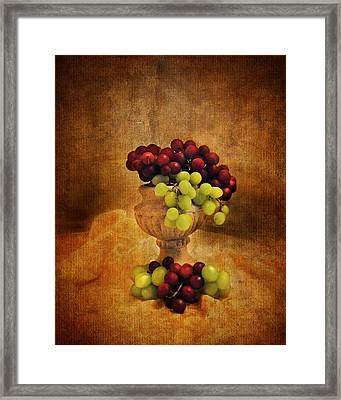 Grapes Framed Print by Jai Johnson