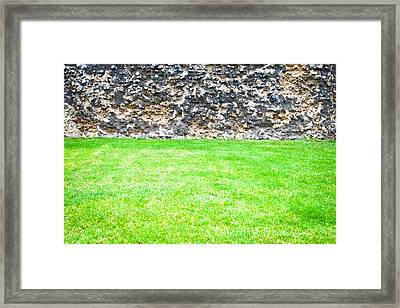 Grass And Stone Wall Framed Print by Tom Gowanlock