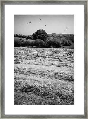 Grass Silage Sileage Making In A Field In Ireland Framed Print by Joe Fox
