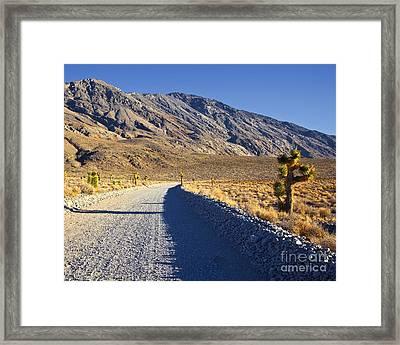 Gravel Road In Desert Framed Print by David Buffington