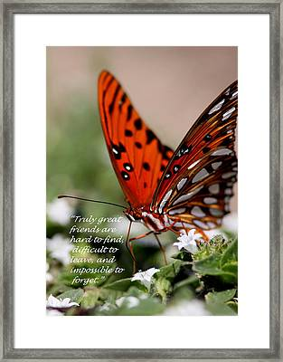 Great Friends Card Framed Print by Travis Truelove