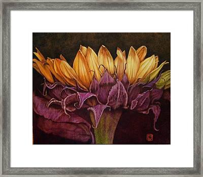 Great Sunflower Framed Print by Cynthia Adams
