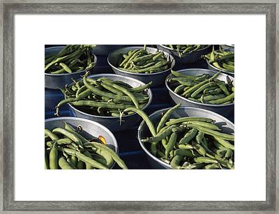 Green Beans In Tin Buckets For Sale Framed Print by David Evans