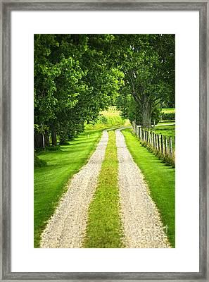 Green Farm Road Framed Print by Elena Elisseeva