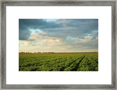 Green Field With Clouds Framed Print by Topher Simon photography