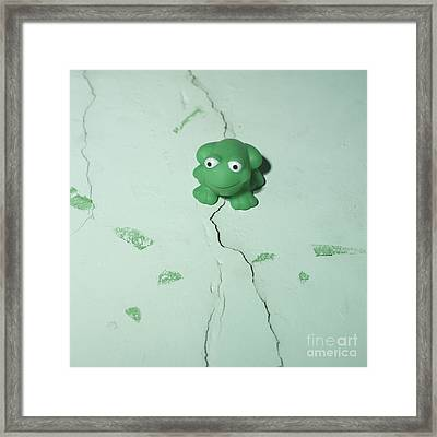 Green Frog Framed Print by Bernard Jaubert