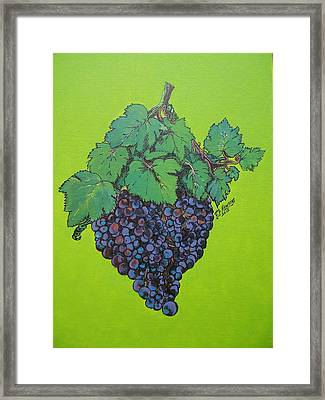 Green Grapes Framed Print by Timothy Hawkins
