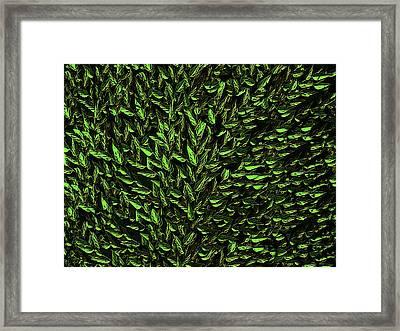 Green Leaf Framed Print by David Dehner