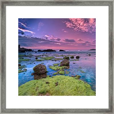 Green Moss Covered Rocks At Sunrise Framed Print by AndreLuu