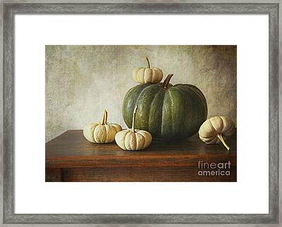 Green Pumpkin And Gourds On Table  Framed Print by Sandra Cunningham