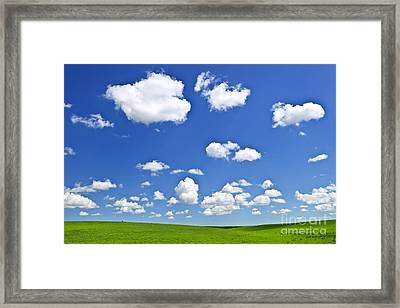Green Rolling Hills Under Blue Sky Framed Print by Elena Elisseeva