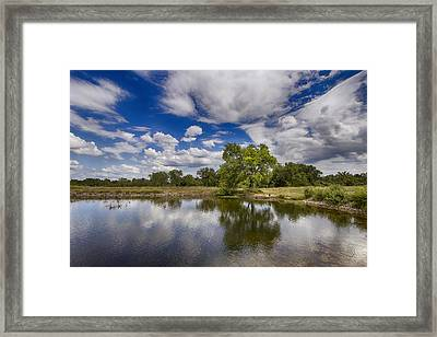 Green Scene At Lake 15 Framed Print by Bill Tiepelman