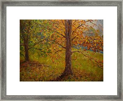 Green Turns To Gold Framed Print by Terry Perham