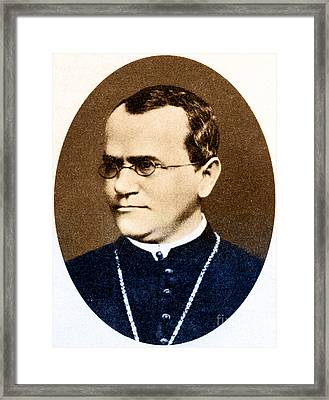 Gregor Mendel, Father Of Genetics Framed Print by Science Source