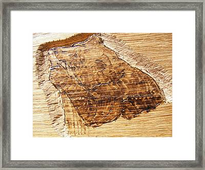 Grizzly Bear Fishing-wood Carving Pyrography Framed Print by Egri George-Christian
