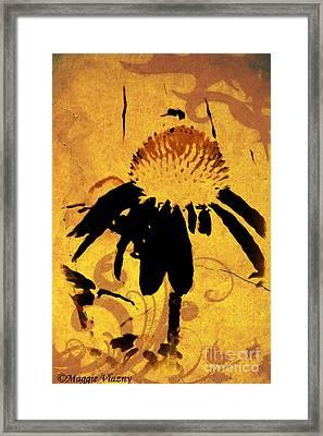 Grunge Orange Daisy Framed Print by Maggie Vlazny