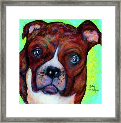 Hailey The Boxer Framed Print by Laura  Grisham