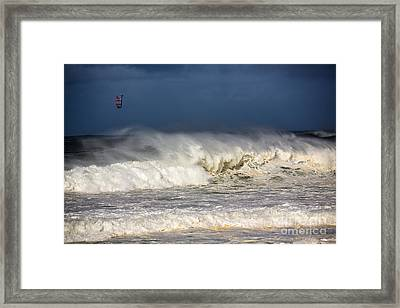 Hanging In There Framed Print by Avalon Fine Art Photography