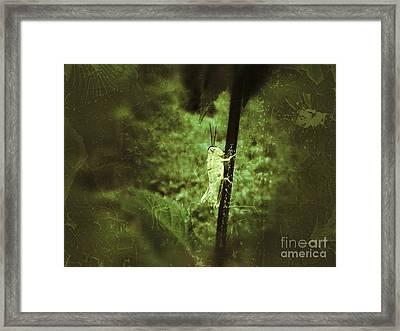 Hanging On Framed Print by Christy Bruna