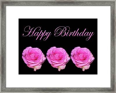 Happy Birthday Three Rose Card Framed Print by Daphne Sampson