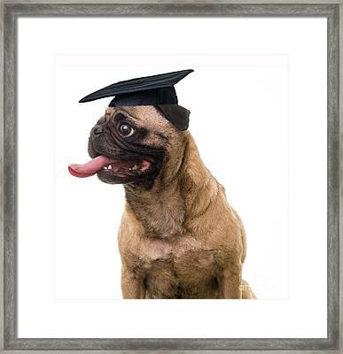Happy Graduation Framed Print by Edward Fielding