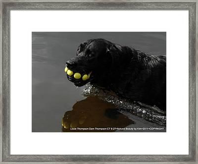 Happy Louie Framed Print by Kim Galluzzo Wozniak