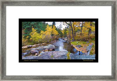 Happy Place In The Woods Panorama Poster  Framed Print by James BO  Insogna