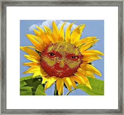 Happy Sunflower Framed Print by Susan Leggett