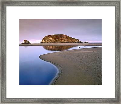 Harris Beach State Park Oregon Framed Print by Tim Fitzharris