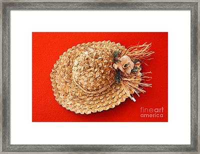 Hat Framed Print by Gaspar Avila