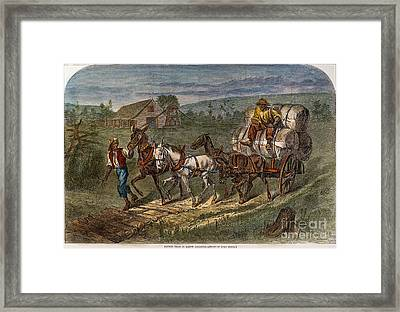 Hauling Cotton, 1866 Framed Print by Granger