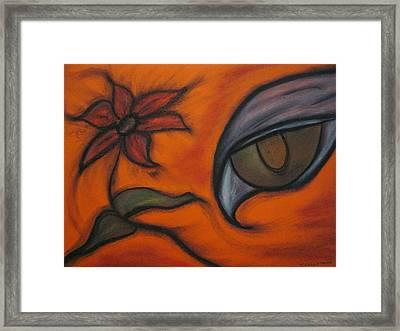 Hawk Eye Enchantment Framed Print by Tracy Fallstrom