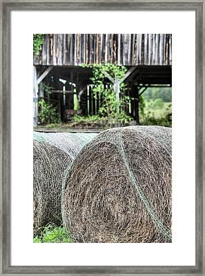 Hay Framed Print by JC Findley