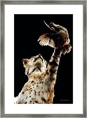 He Got Away Framed Print by DiDi Higginbotham