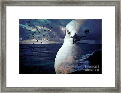 He Spotted Land And Knew He Was Home Framed Print by Karen Lewis