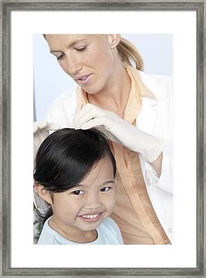 Head Lice Examination Framed Print by Adam Gault