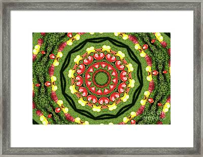 Heart Kaleidoscope Framed Print by Mariola Bitner