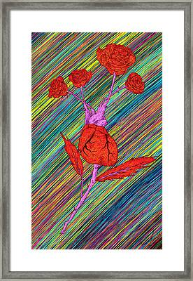 Heart Made Of Roses Framed Print by Pierre Louis