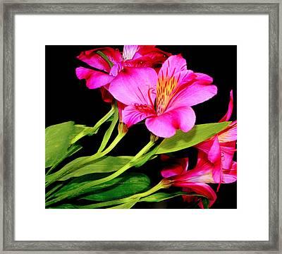 Heavenly...... Framed Print by Tanya Tanski