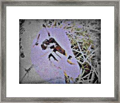 Helping The Crow Framed Print by YoMamaBird Rhonda