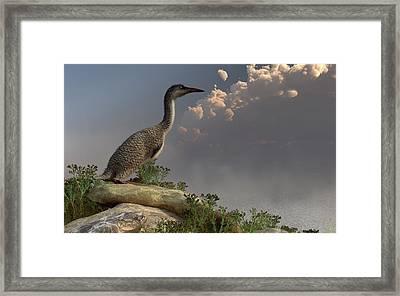 Hesperornis By The Sea Framed Print by Daniel Eskridge