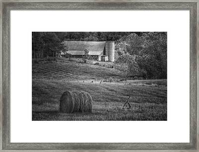 Hidden Away In Black And White Framed Print by Mary Timman