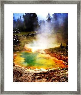 Hidden Gem Framed Print by Ellen Heaverlo