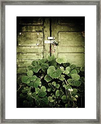 Hidden Nature Framed Print by Jessica Brawley