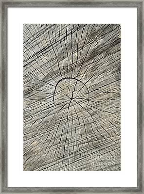 Hieroglyphics Framed Print by Luke Moore
