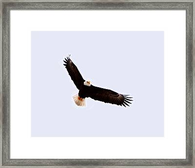High Ruler Framed Print by Don Mann